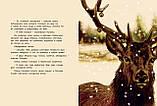 Книга Где живёт Дед Мороз?, фото 5