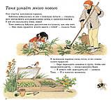 Книга Герды Мюллер Как растут овощи? Детям от 3 лет, фото 5