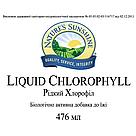 Жидкий Chlorophyll Liquid, Хлорофилл жидкий, NSP, США, фото 4