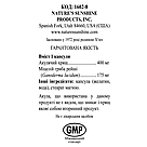 SC Formula Эс Си Формула, NSP, НСП, США. Антибактериальное и антигрибковое воздействие, защита суставов., фото 3