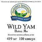 Wild Yam Дикий Ямс, НСП, NSP, США.  Нормализует гормональный статус женского организма., фото 3