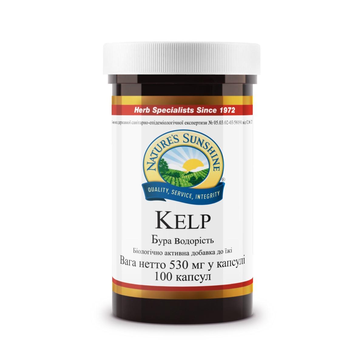 Kelp Бурая водоросль, Келп, НСП, NSP, США. Источник органического йода