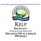 Kelp Бурая водоросль, Келп, НСП, NSP, США. Источник органического йода, фото 3
