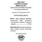Kelp Бурая водоросль, Келп, НСП, NSP, США. Источник органического йода, фото 4