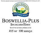 Boswellia Plus  NSP, Босвеллия Плюс НСП, США, фото 3