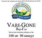 Vari - Gone NSP, Вэри - Гон НСП, США, фото 3