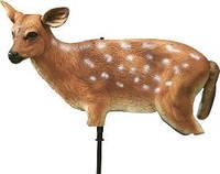 Чучело пятнистого оленя