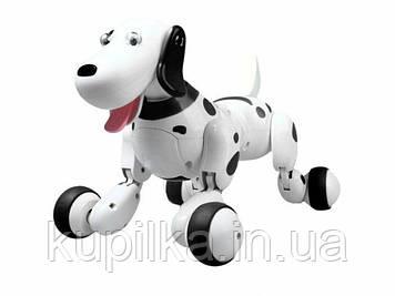 Собака на радиоуправлении 777-338 Черный