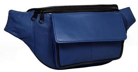 Поясная сумка, бананка из кожи Cavaldi 902-353 синяя, фото 2