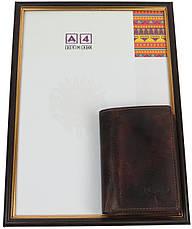 Мужское кожаное портмоне ALWAYS WILD SN4HP3 Rust, фото 2