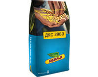 Семена кукурузы МОНСАНТО ДКС 2960 (Monsanto DKS 2960)