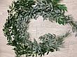 Рускус искусственный ( оливковый 170 см ), фото 4