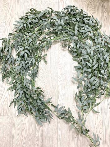 Рускус искусственный ( оливковый 170 см ), фото 2