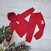 Трикотажный костюм на флисе 081 размеры 98 104 110 116