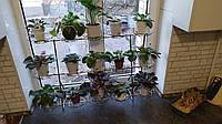 Фиалка-6, подставка для цветов на 15 чаш, фото 1