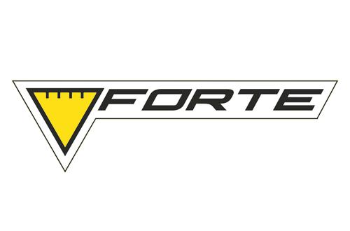 Генераторы FORTE