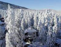 Зимняя сказка Болгарии. Тур 8 дней.