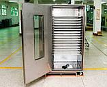 Сушильна шафа дегидратор яблук 100 кг/год, фото 2