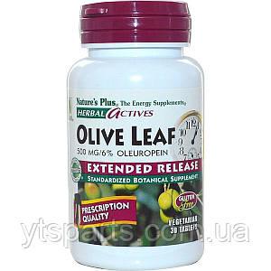 Оливковые Листья Медленного Высвобождения, Nature's Plus, 30 Таблеток