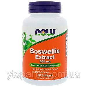 Босвелия Экстракт, Boswellia Extract, Now Foods, 90 Гелевых Капсул