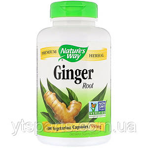 Корень Имбиря, Ginger Root, Nature's Way,, 550 мг, 180 капсул