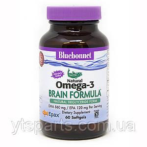 Омега-3 Формула для Мозга,  Bluebonnet Nutrition, Omega-3 Brain Formula, 60 желатиновых капсул