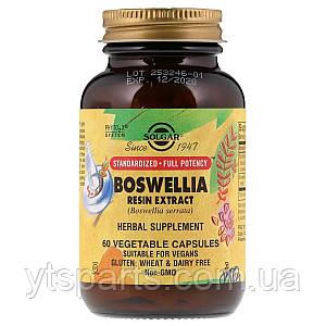 Босвелия Экстракт, Boswellia Resin Extract, Solgar, 60 вегетарианских капсул