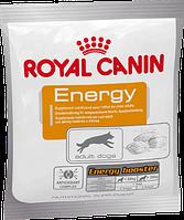 Royal Canin Energy для дополнительного снабжения энергией, 50 гр