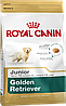 Royal Canin Golden Retriever Junior, 12 кг