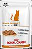 Royal Canin Senior Consult Stage 1 Feline влажный, 12 шт