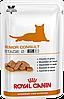 Royal Canin Senior Consult Stage 2 Feline влажный, 12 шт
