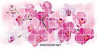 Декоративні Панелі ПВХ Мозаїка орхідея розея