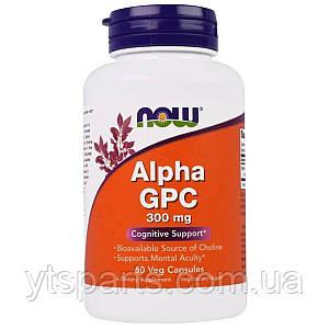 Альфа GPC, 300 мг, Alpha GPC, Now Foods, 60 вегетарианских капсул