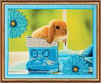 """Набор для вышивания бисером на художественном холсте """"Кролики 3"""""""