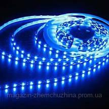 SALE! Светодиодная лента 3528 (60 светодиодов, 12V, Blue)  силикон, фото 2