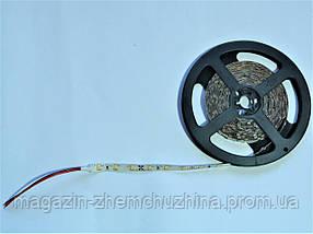 SALE! Светодиодная лента 3528 (60 светодиодов, 12V, Blue)  силикон, фото 3