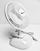 Вентилятор 2в1 Domotec MS-1623, фото 1