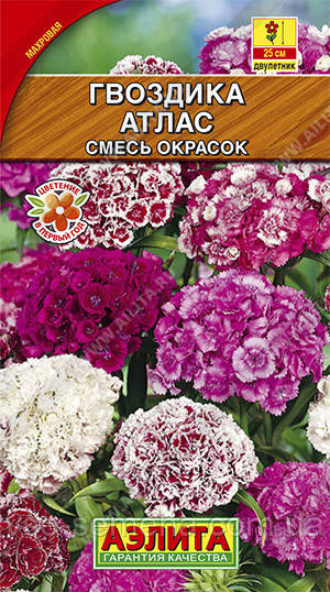 Гвоздика турецкая Атлас, смесь окрасок 0,1 г (Аэлита)