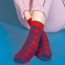 Червоні чоловічі шкарпетки в синю клітку ТМ SOX, фото 2