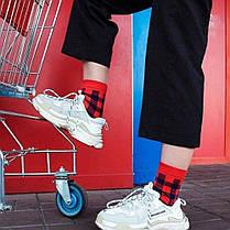 Червоні чоловічі шкарпетки в синю клітку ТМ SOX, фото 3