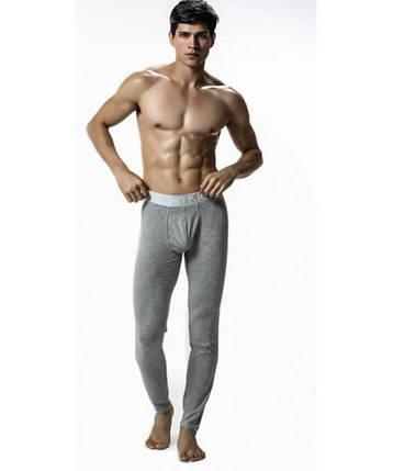 Чоловічі бавовняні підштаники сірого кольору Calvin Klein, фото 2
