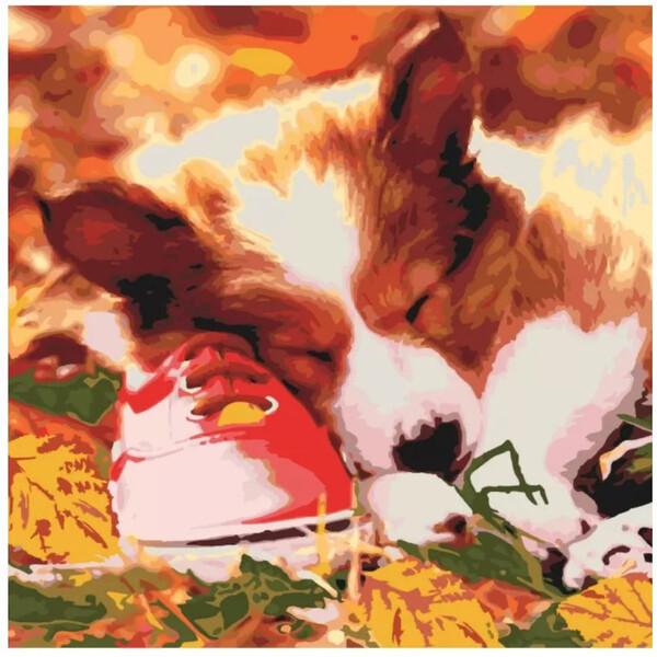 Картина по номерам Идейка Спящий малыш 40х40 см Набор для рисования Животные Собачка