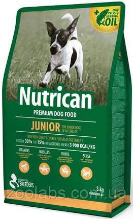 Корм Nutrican для щенков всех пород   Nutrican Junior Dog 15 кг, фото 2