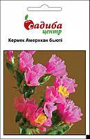 Насіння Кермек Американ Бьюті, рожевий 0,1 г.  Hем Zaden, Нідерланди, фото 1