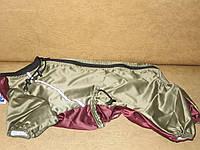 Комбинезон КБ 22  для шарпея (48-50 см)