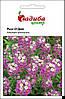 Насіння Лобулярія приморська Розі О'Дей, 0,1 г. Нідерланди
