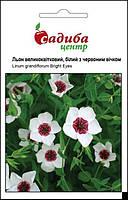 Насіння Льон великоквітковий, білий з червоним вічком 0,5 г Нідерланди, фото 1