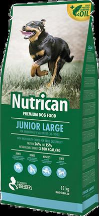 Корм Nutrican для щенков крупных пород | Nutrican Junior Large Breed Dog 15 кг, фото 2