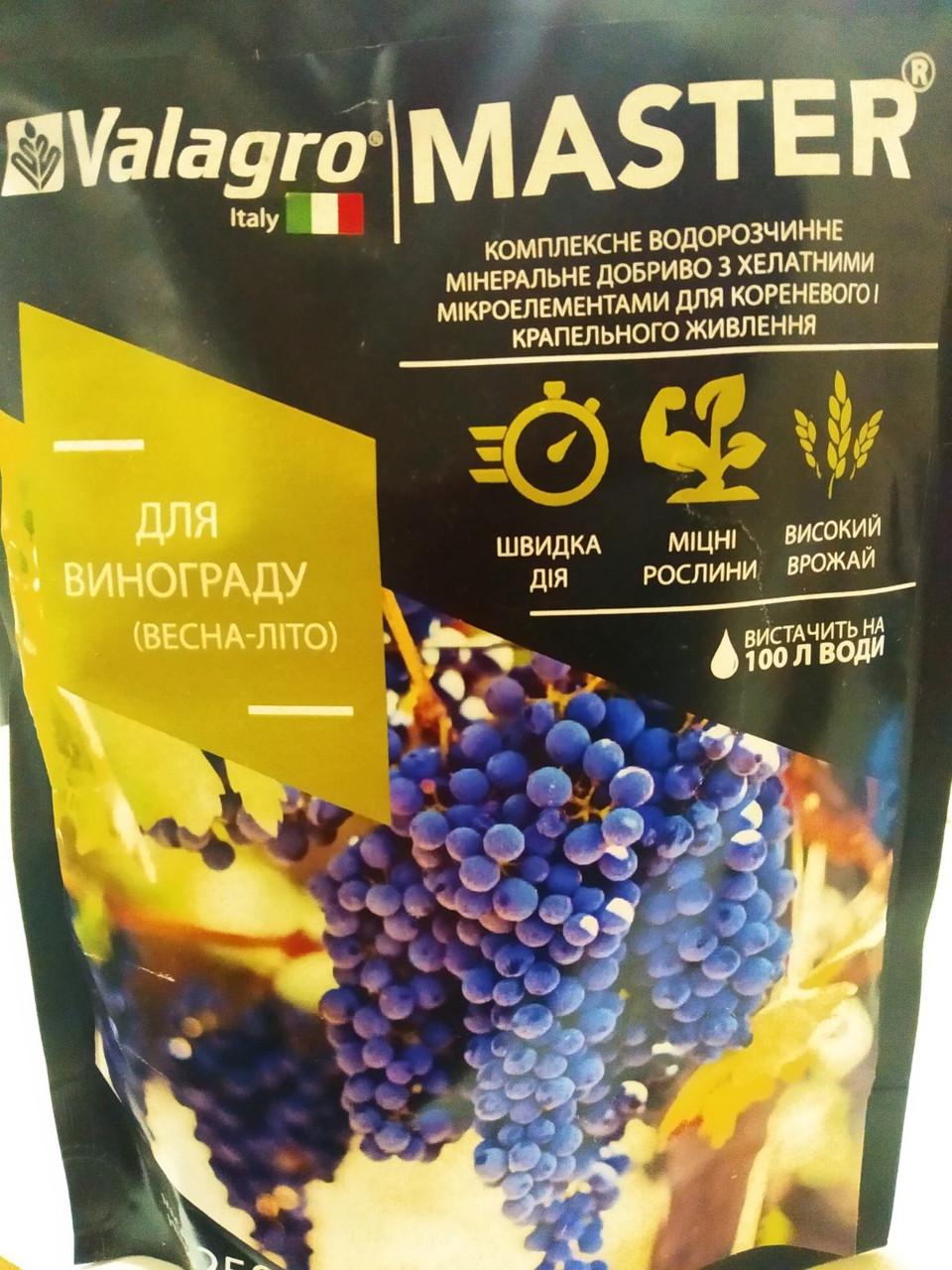 Комплексне водорозчинне мінеральне добриво для винограду весна-літо MASTER Valagro 250 грам Італія
