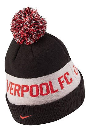 Шапка Nike Liverpool FC DA7841-010, фото 2